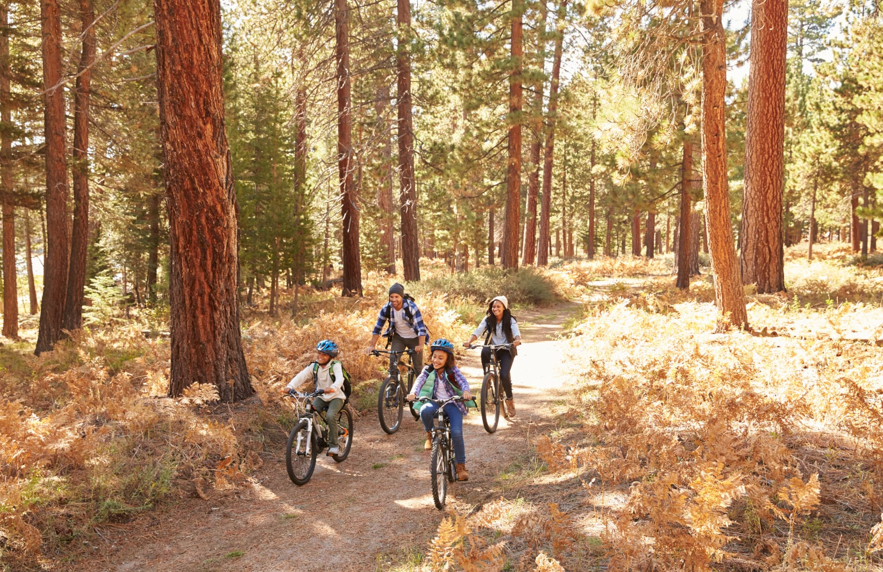 Cycling Tips for the Perfect Family Bike Ride