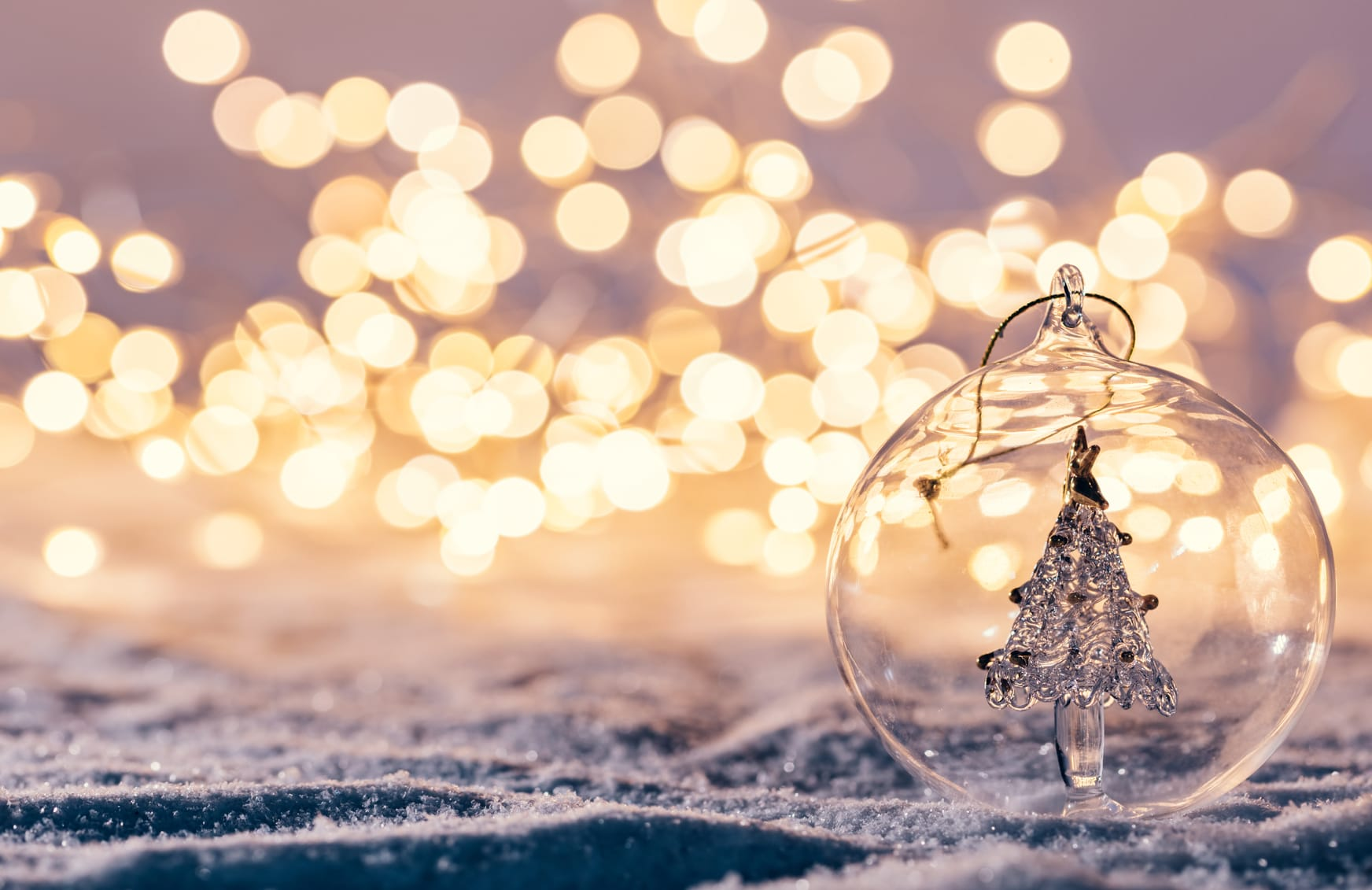 Outdoor Christmas Lights Festive Ideas For Your Garden