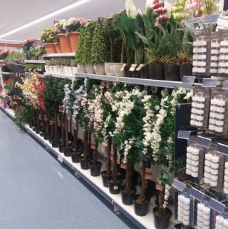 B&M's brand new store in Lichfield boasts a blooming range of beautiful artificial plants and foliage, ideal for indoor and outdoor use.