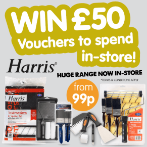 Win a £50 B&M voucher thanks to Paint Brush Experts, Harris!