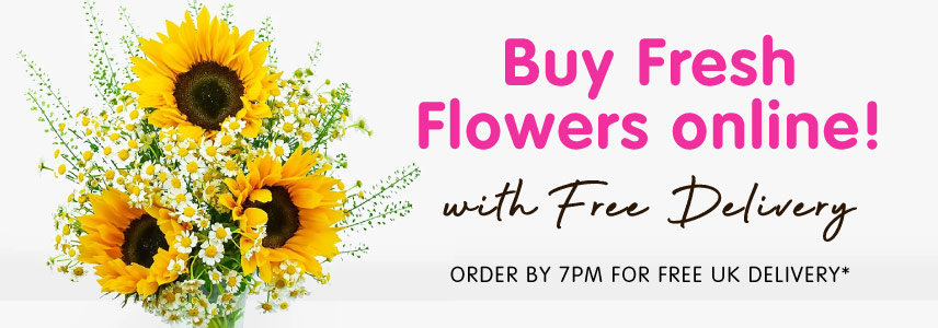 Save on Fresh Flowers at B&M.