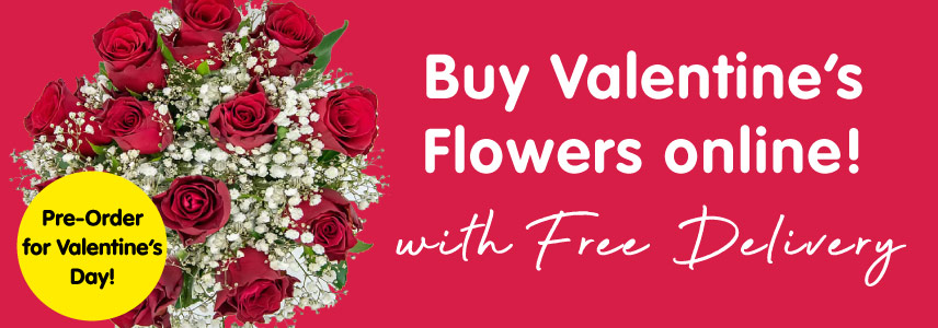 Pre-order Valentine's Day flowers online at B&M.