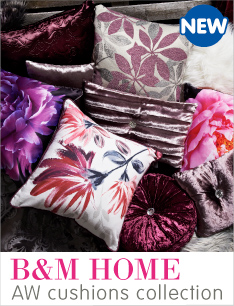 AW Cushions now in store at B&M.