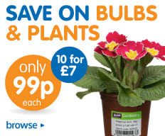 Save on Plants and Bulbs