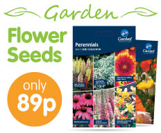 Save on Flower Seeds at B&M.