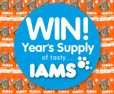 Win a Year's Supply of IAMS.