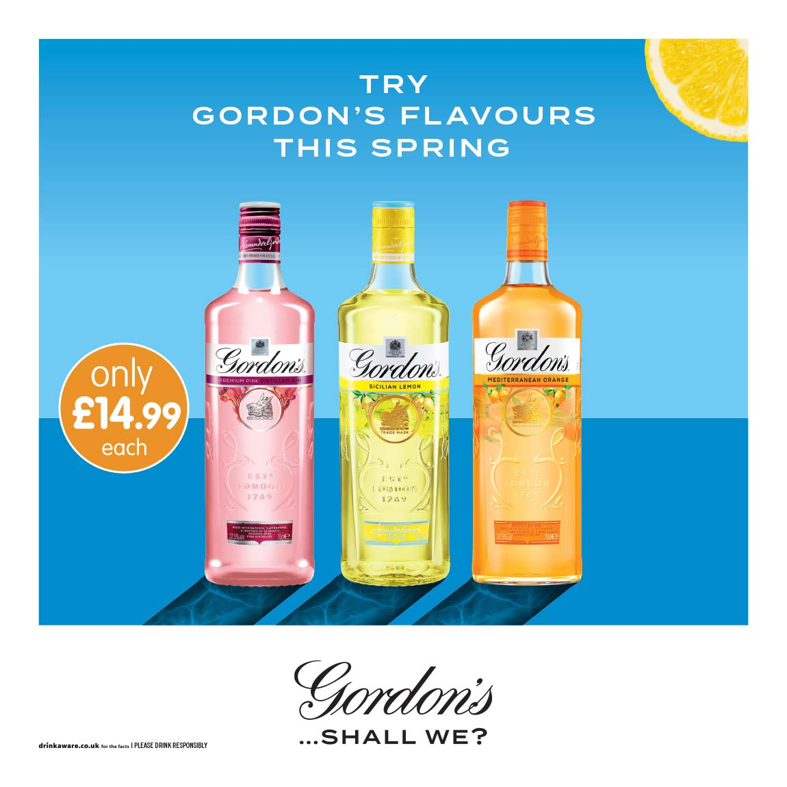 New Gordon's Gin Flavours at B&M.