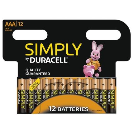 261918-duracell-aaa-12pk-batteries