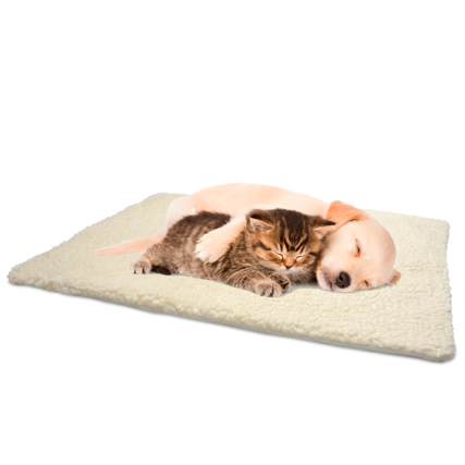 273917-Self-Heating-Snuggle-Rug-Main-Image-2