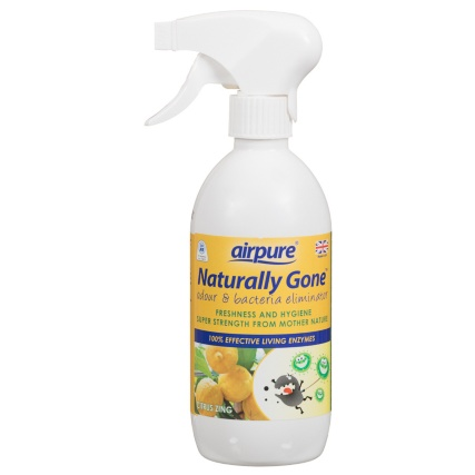 278923-Airpure-Naturally-Gone-500ml-citrus-zing1