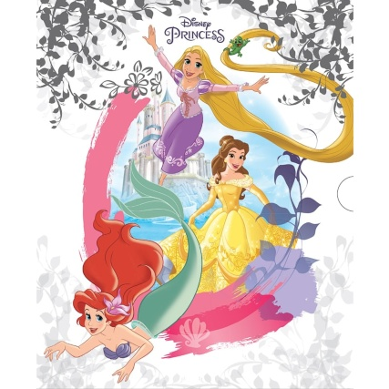 294519-Disney-Princess-Slipcase