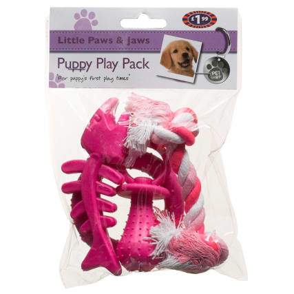 295472-Puppy-Play-Pack