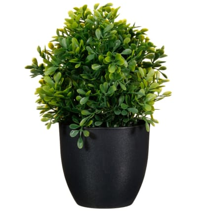 297350-Leafy-Plant-Pot-2