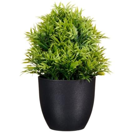 297350-Leafy-Plant-Pot-3
