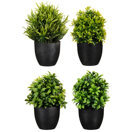 297350-Potted-Plant-20cm-main1