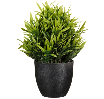 297350-Potted-Plant-20cm1