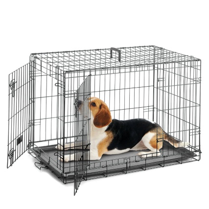 297893-dog-crate