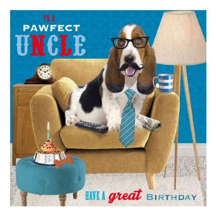 301168-fun-pawfect-dog-on-chair