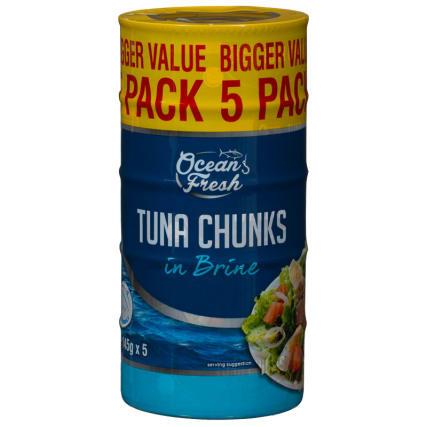301651-Ocean-Fresh-Tuna-Chunks-in-Brine-145gx51