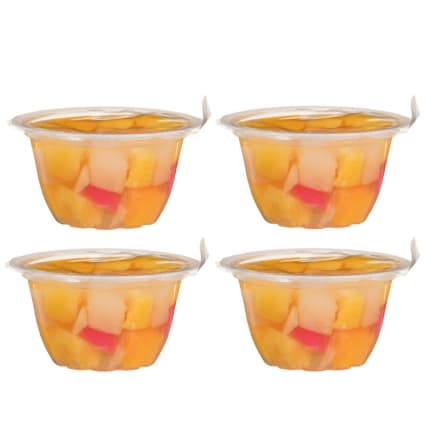 301802-Seasons-Harvest-Fruit-Salad-in-Light-Syrup-4x113g-4pack1
