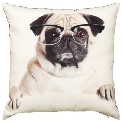 303995-Printed-Pug-Cushion-glasses