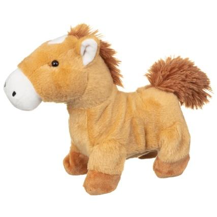 314132-my-walk-along-pony-pal-2