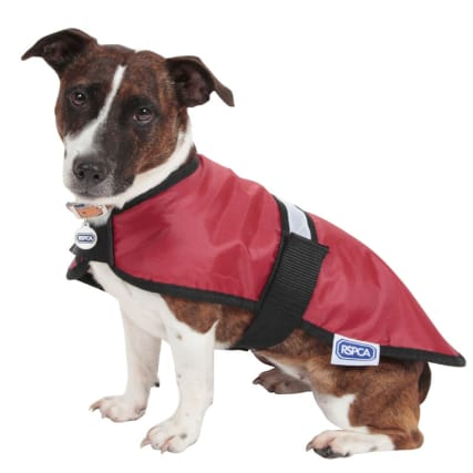 316688_RSPCA-Reflective-Coat_Red