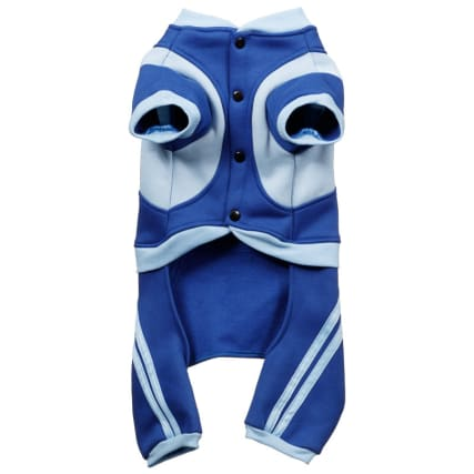 316689-Doggy-Blue-Tracksuit-21
