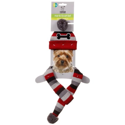 316690-Dog-Hat-and-Scarf-Set-2