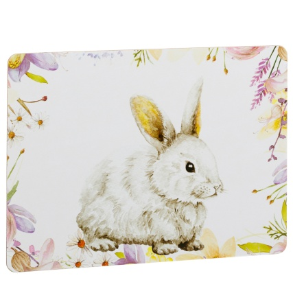 317446-Set-of-4-Placemats-Animals-5