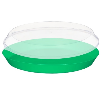 321263-food-tray-with-clear-lid-green