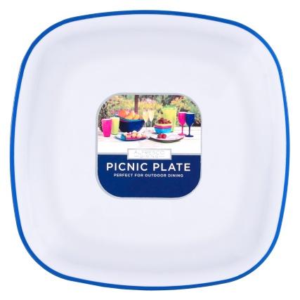 321597-picnic-plates-blue