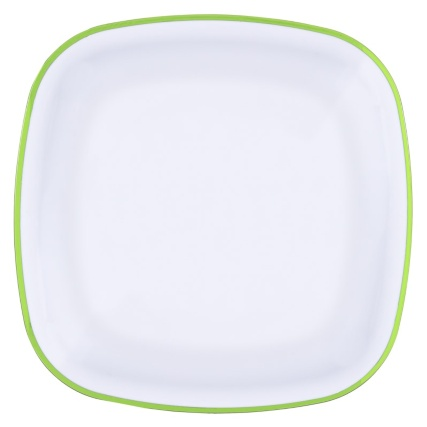 321597-picnic-plates-green