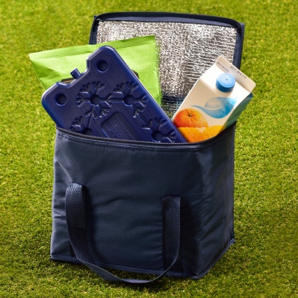 321674-cool-bag-with-ice-pack-blue1