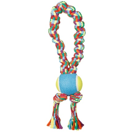322581-throw-and-fetch-rainbow-rope-5