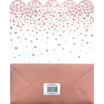 323722-occasions-gift-bag-rose-glitter-hearts-2