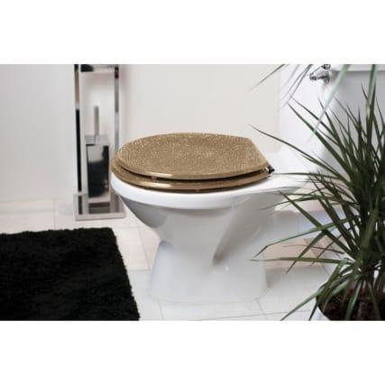 324120-glitter-toilet-seat-champagne
