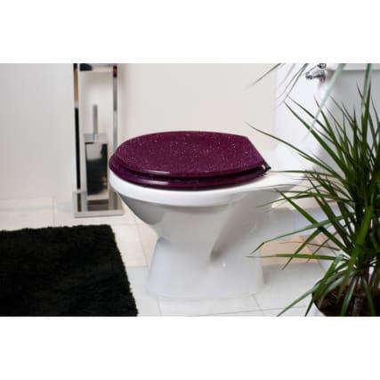 324120-glitter-toilet-seat-plum