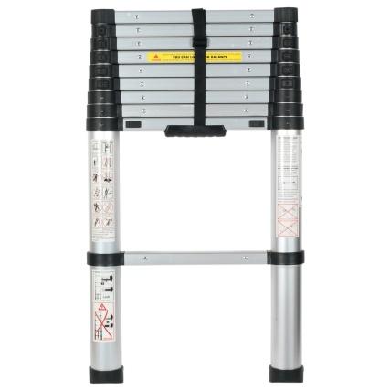 325442-2_9-Telescopoic-Ladder-2