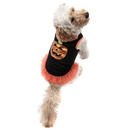 328368-Halloween-Pumpkin-Dress-2