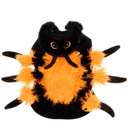 328379-Pet-Spider-Outfit-2