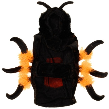 328379-Pet-Spider-Outfit-3