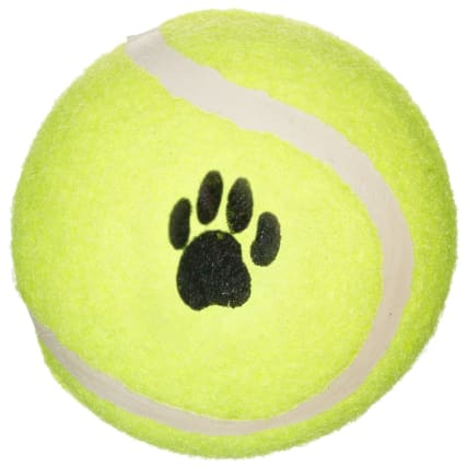331824-throw-and-fetch-tennis-balls-4pk-2