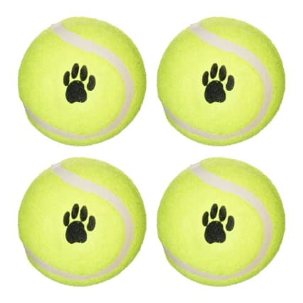 331824-throw-and-fetch-tennis-balls-4pk