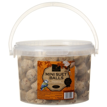 333254-finchleys-mini-suet-balls