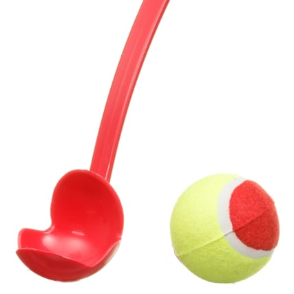 333261-ball-thrower-red-4