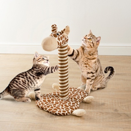 333508-giraffe-novelty-cat-scracther