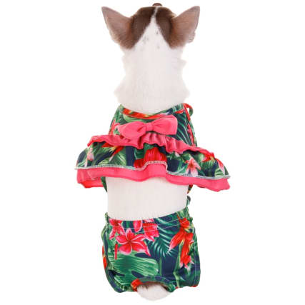 334256-doggy-swimsuit