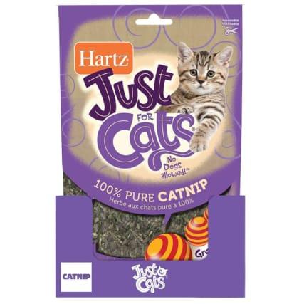 334482-hartz-catnip