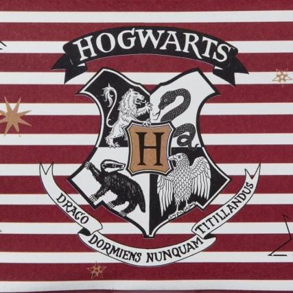 336528-harry-potter-pencil-case-2.jpg
